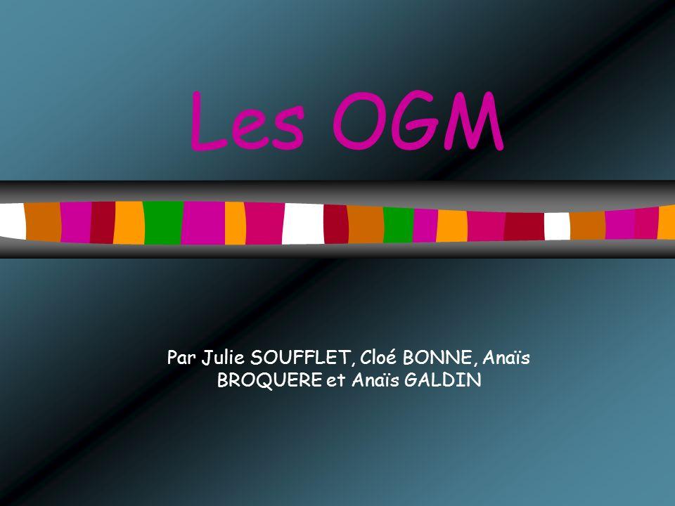 Par Julie SOUFFLET, Cloé BONNE, Anaïs BROQUERE et Anaïs GALDIN