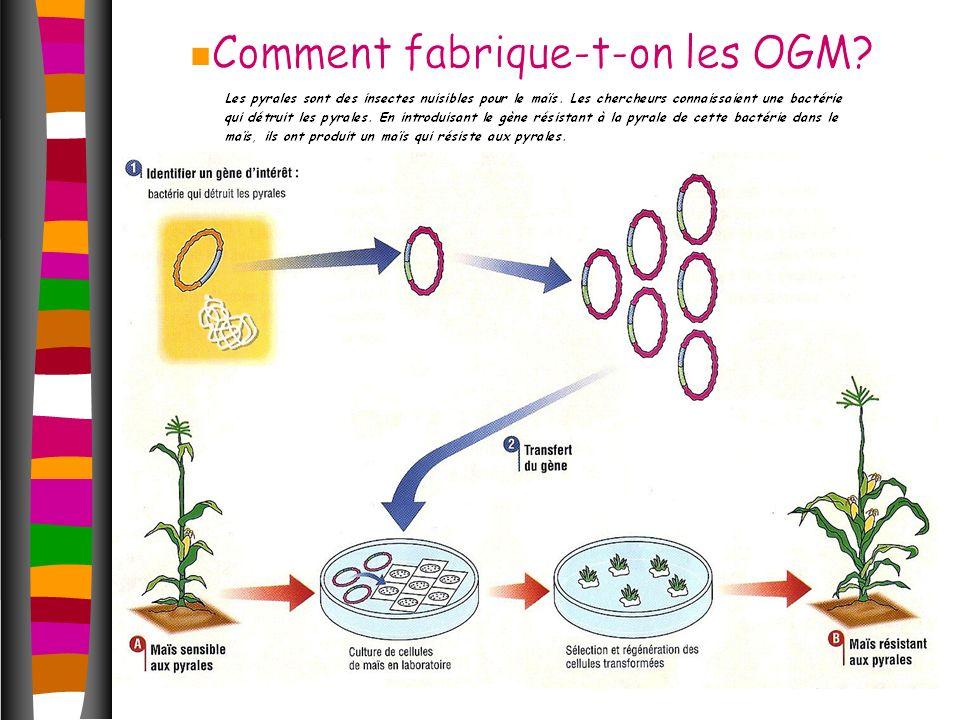 Comment fabrique-t-on les OGM