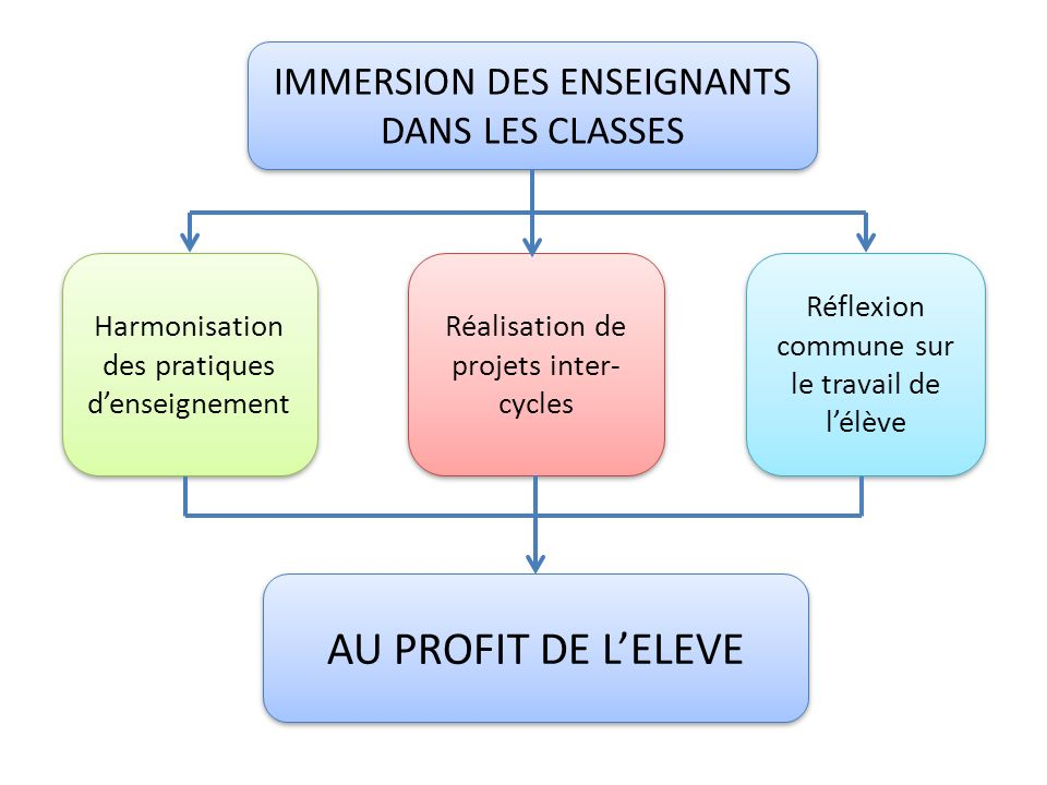 AU PROFIT DE L'ELEVE IMMERSION DES ENSEIGNANTS DANS LES CLASSES