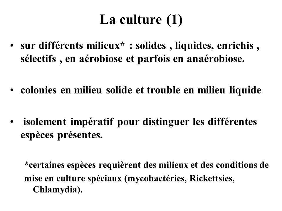 La culture (1) sur différents milieux* : solides , liquides, enrichis , sélectifs , en aérobiose et parfois en anaérobiose.