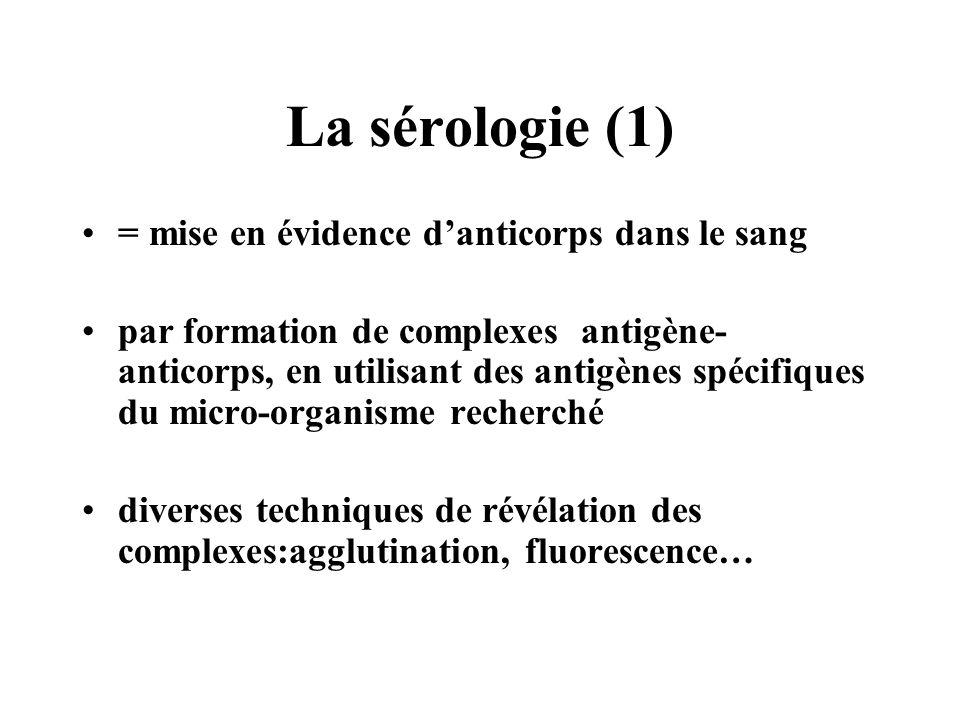 La sérologie (1) = mise en évidence d'anticorps dans le sang