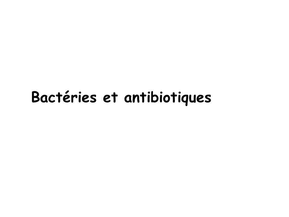 Bactéries et antibiotiques