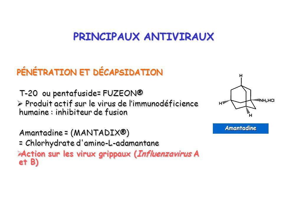 PRINCIPAUX ANTIVIRAUX