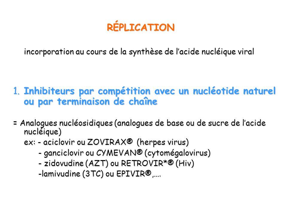 incorporation au cours de la synthèse de l'acide nucléique viral