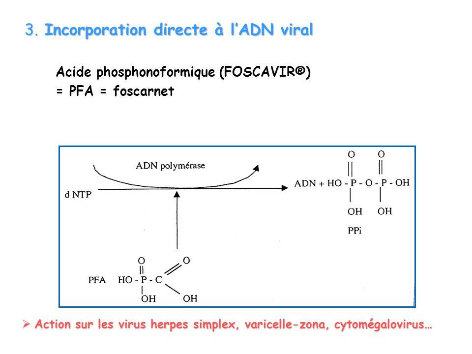 3. Incorporation directe à l'ADN viral