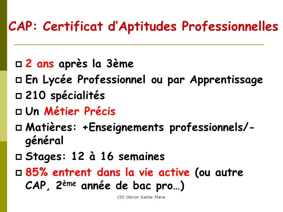 CAP: Certificat d'Aptitudes Professionnelles