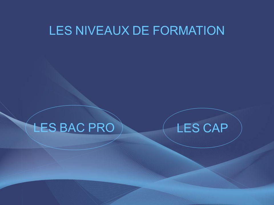 LES NIVEAUX DE FORMATION