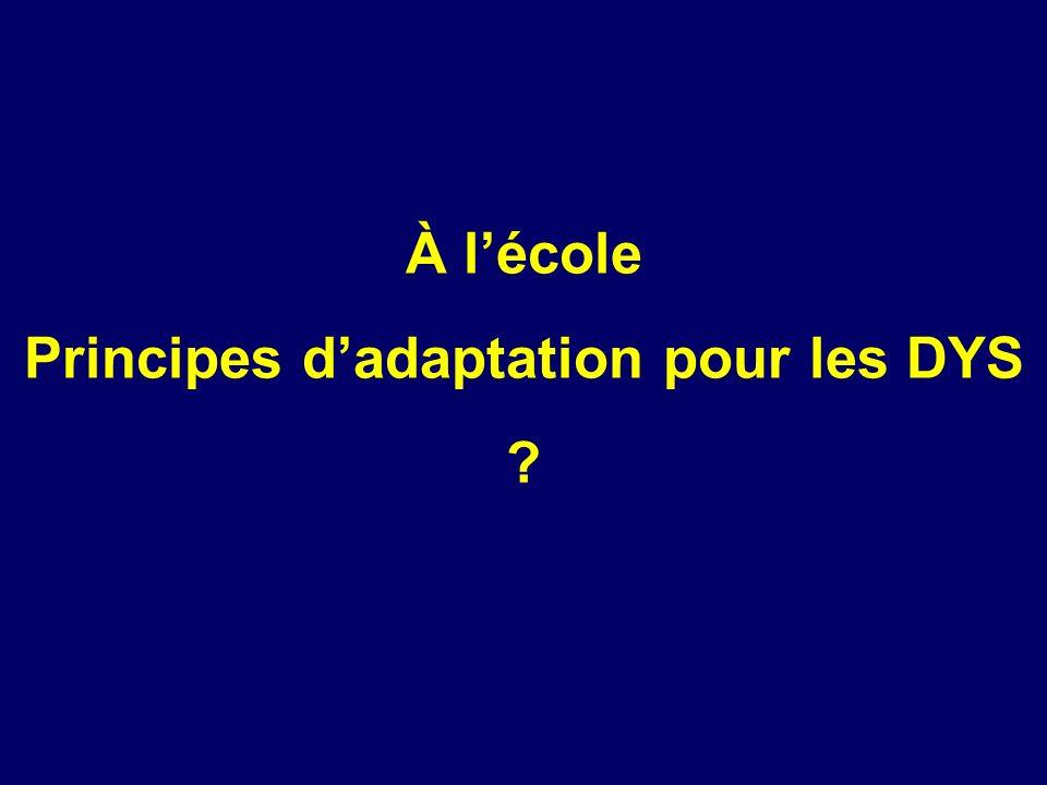 Principes d'adaptation pour les DYS