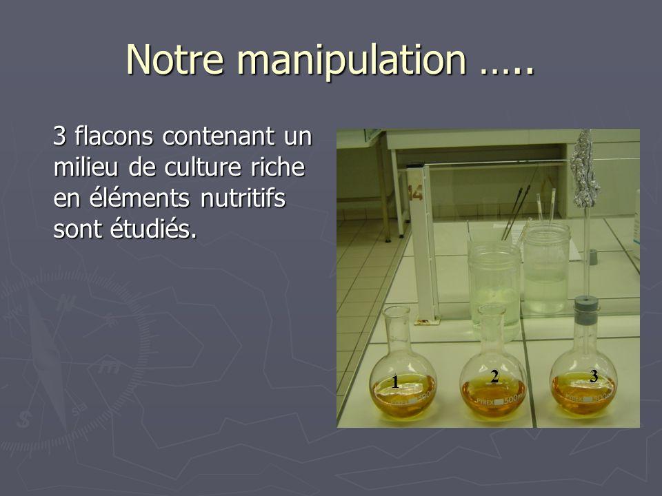 Notre manipulation ….. 3 flacons contenant un milieu de culture riche en éléments nutritifs sont étudiés.