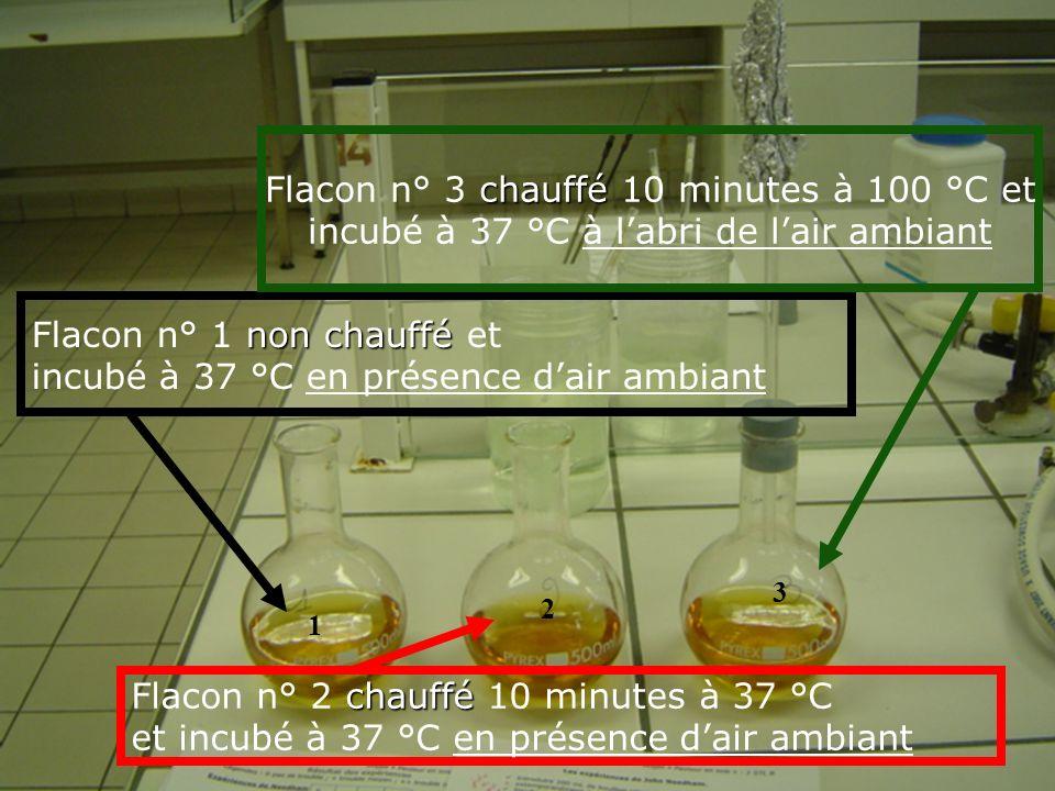 Flacon n° 3 chauffé 10 minutes à 100 °C et