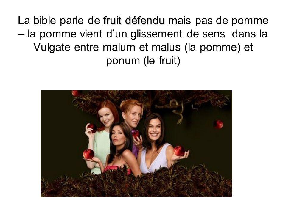 La bible parle de fruit défendu mais pas de pomme – la pomme vient d'un glissement de sens dans la Vulgate entre malum et malus (la pomme) et ponum (le fruit)