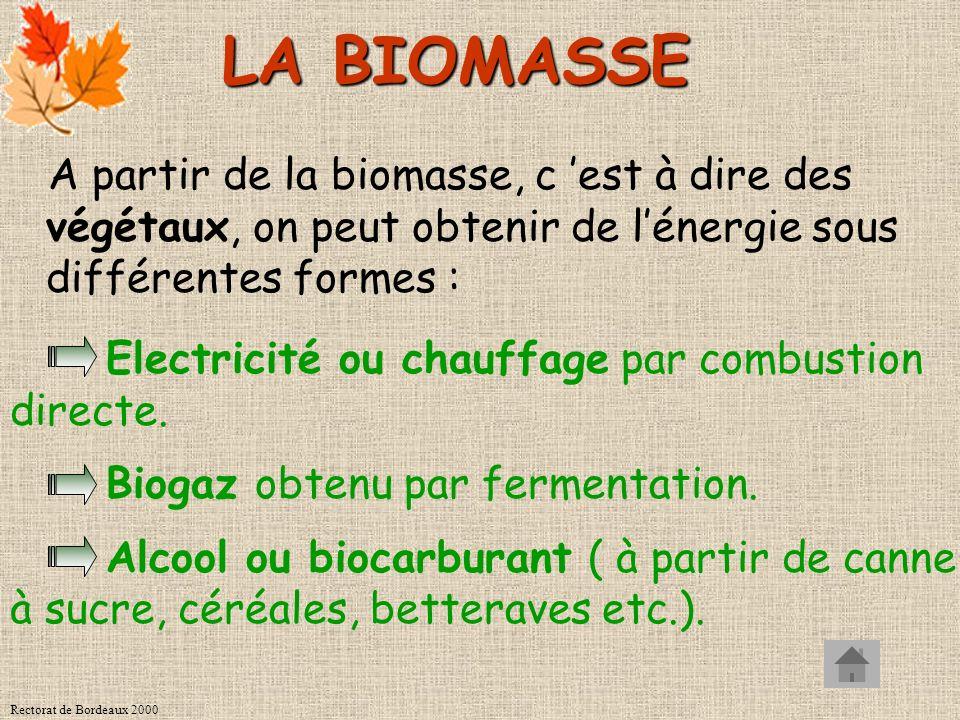 LA BIOMASSE A partir de la biomasse, c 'est à dire des végétaux, on peut obtenir de l'énergie sous différentes formes :