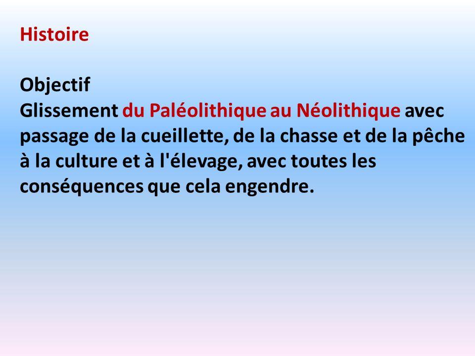 HistoireObjectif.