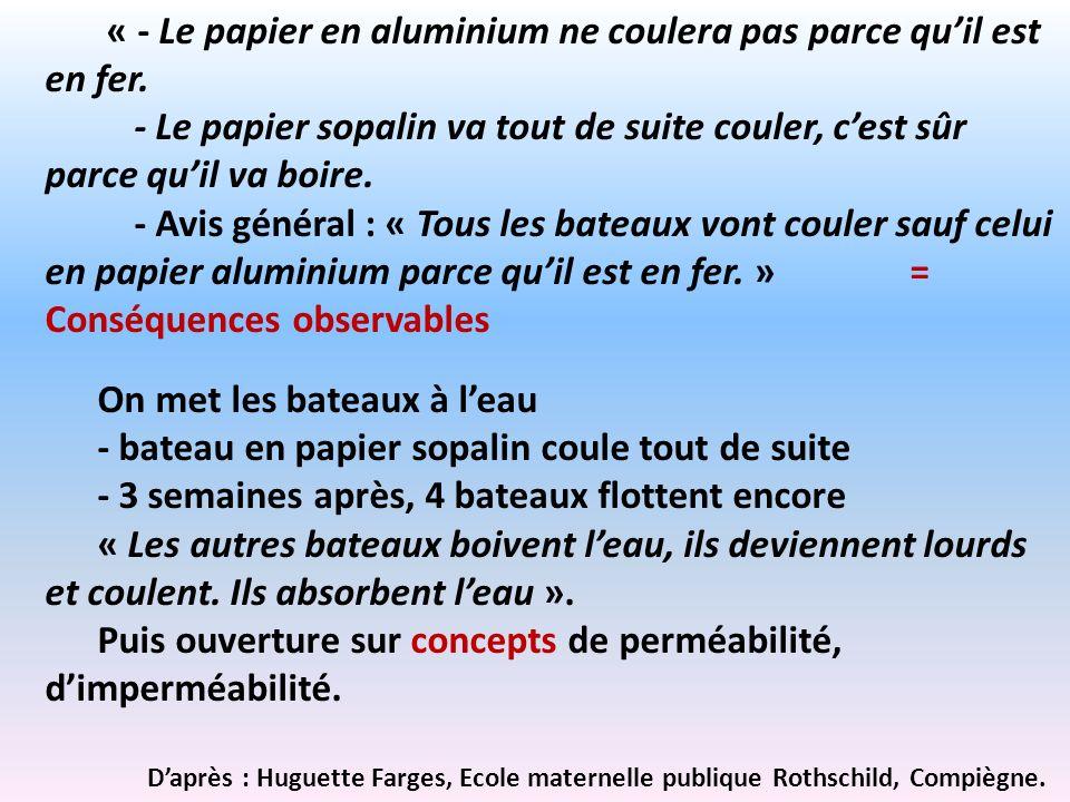 « - Le papier en aluminium ne coulera pas parce qu'il est en fer.