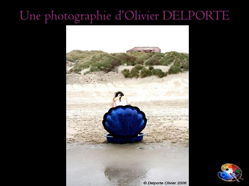 Une photographie d'Olivier DELPORTE