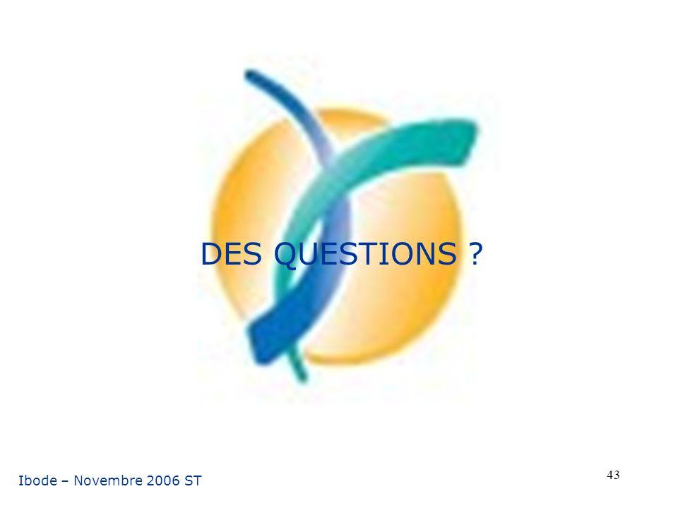 DES QUESTIONS Ibode – Novembre 2006 ST