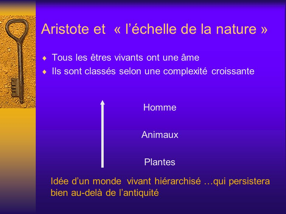 Aristote et « l'échelle de la nature »