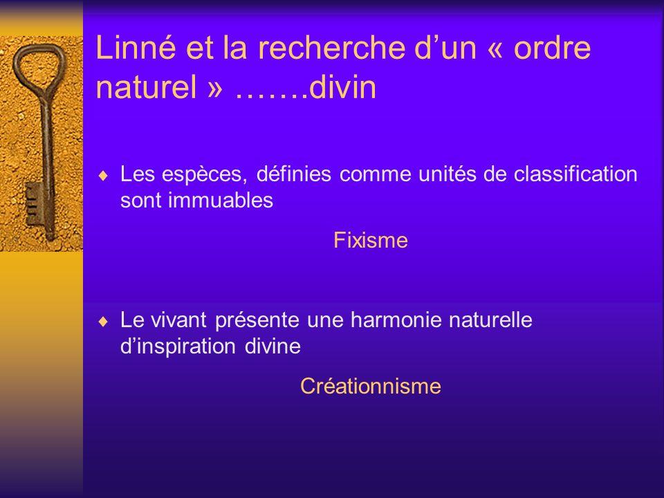 Linné et la recherche d'un « ordre naturel » …….divin