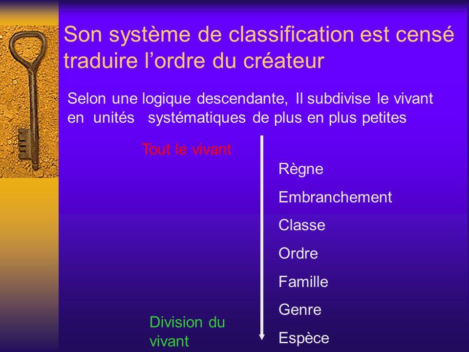 Son système de classification est censé traduire l'ordre du créateur