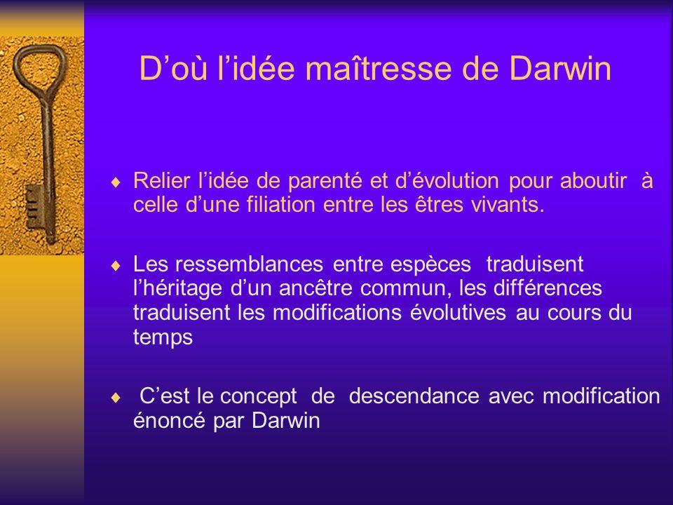 D'où l'idée maîtresse de Darwin