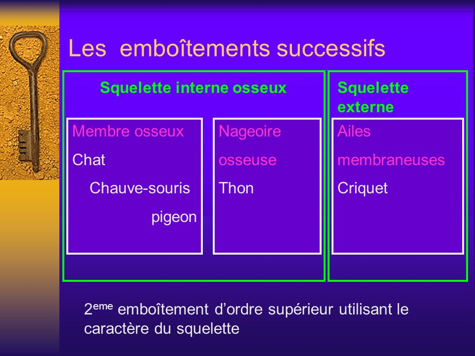 Les emboîtements successifs