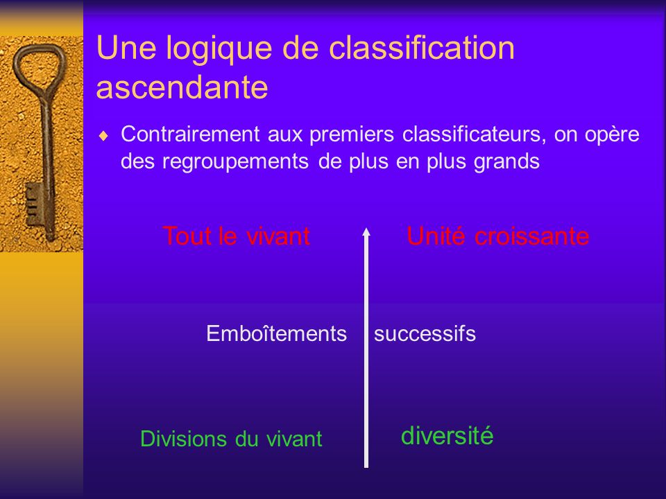 Une logique de classification ascendante
