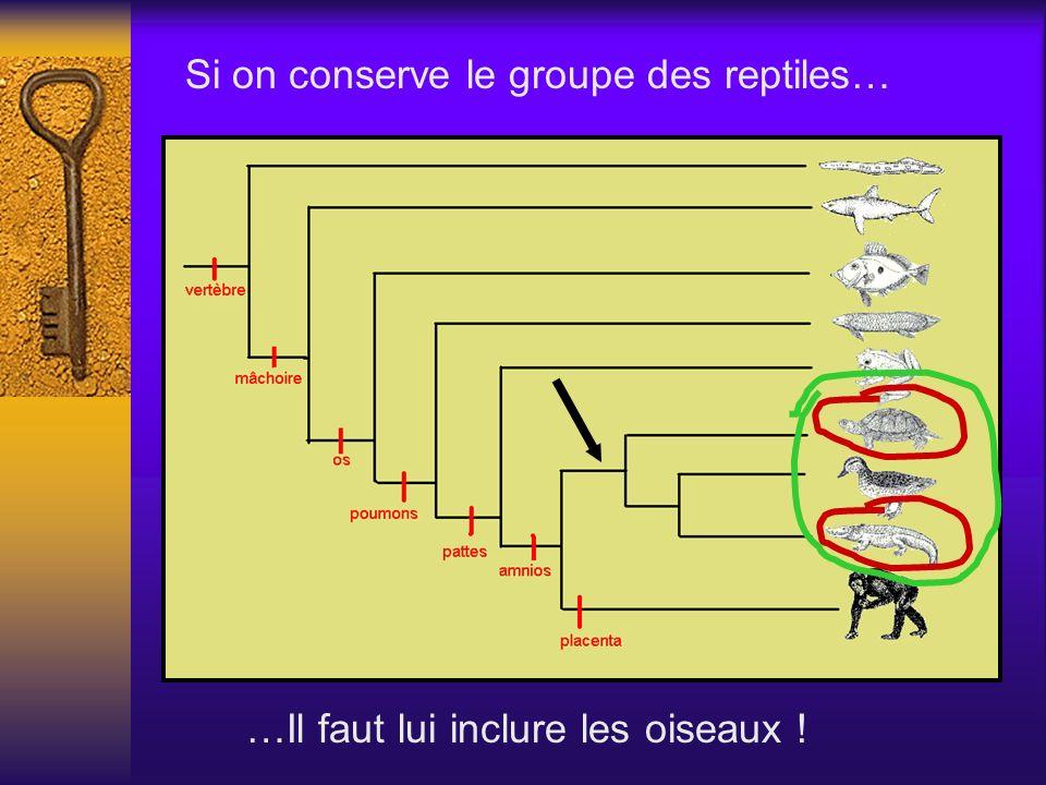 Si on conserve le groupe des reptiles….