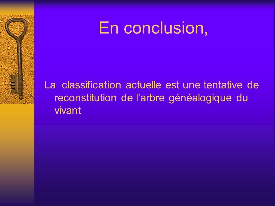 En conclusion, La classification actuelle est une tentative de reconstitution de l'arbre généalogique du vivant.