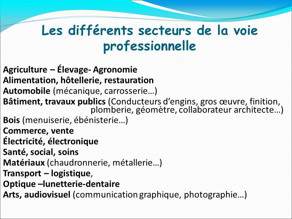 Les différents secteurs de la voie professionnelle