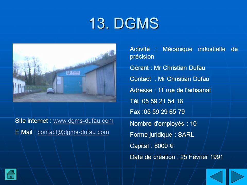 13. DGMS Activité : Mècanique industielle de précision