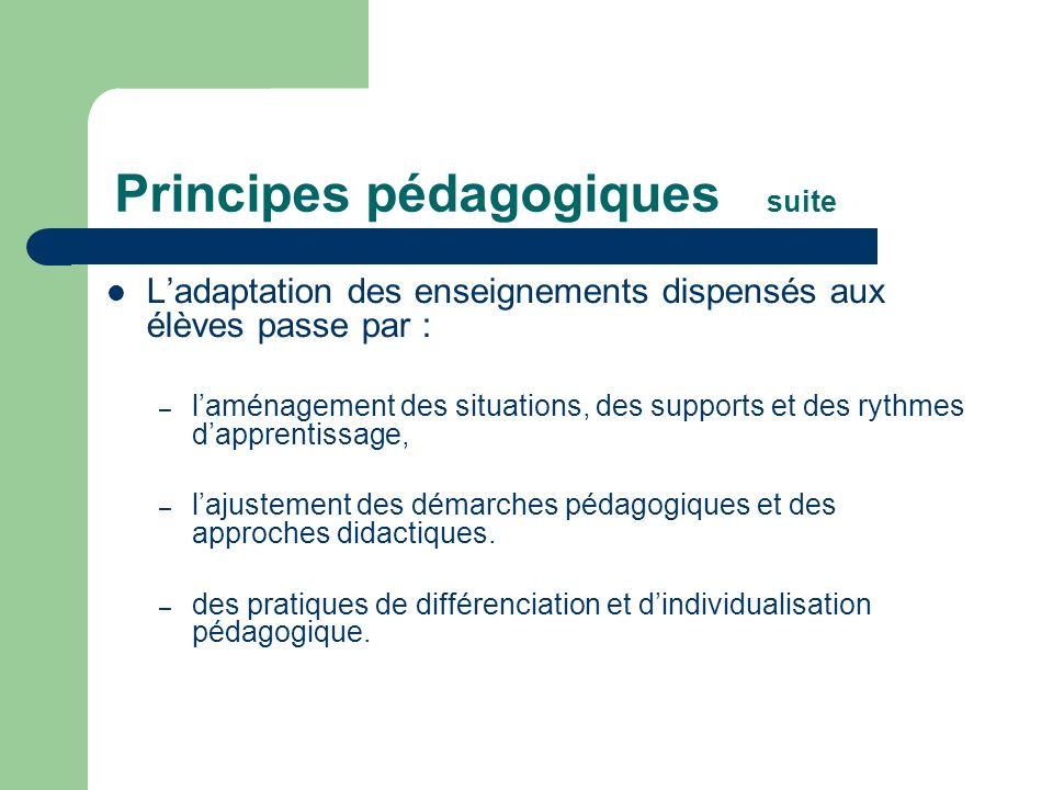 Principes pédagogiques suite