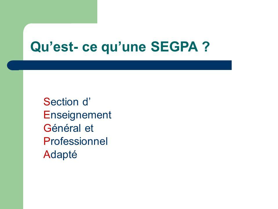 Qu'est- ce qu'une SEGPA