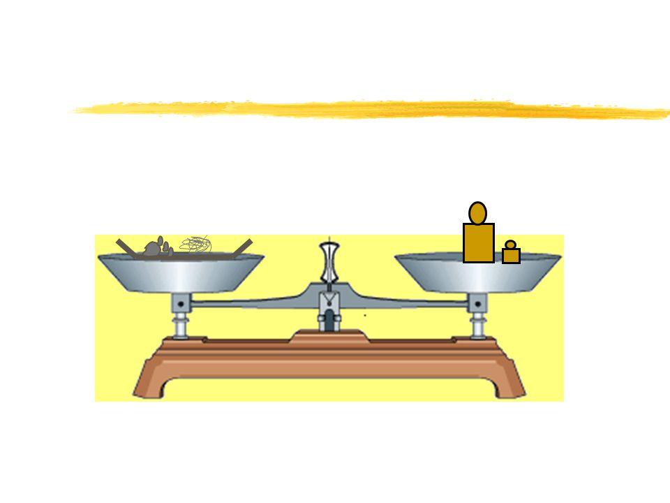 La masse à la fin de la réaction est supérieure à la masse de fer de départ.