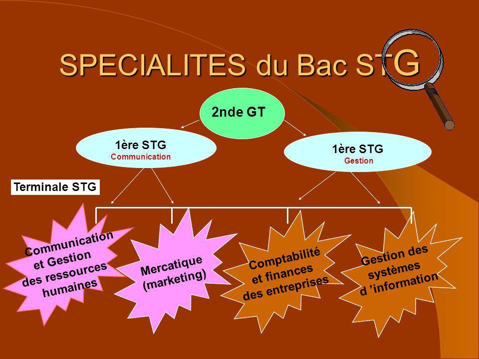 SPECIALITES du Bac STG 2nde GT 1ère STG 1ère STG Terminale STG