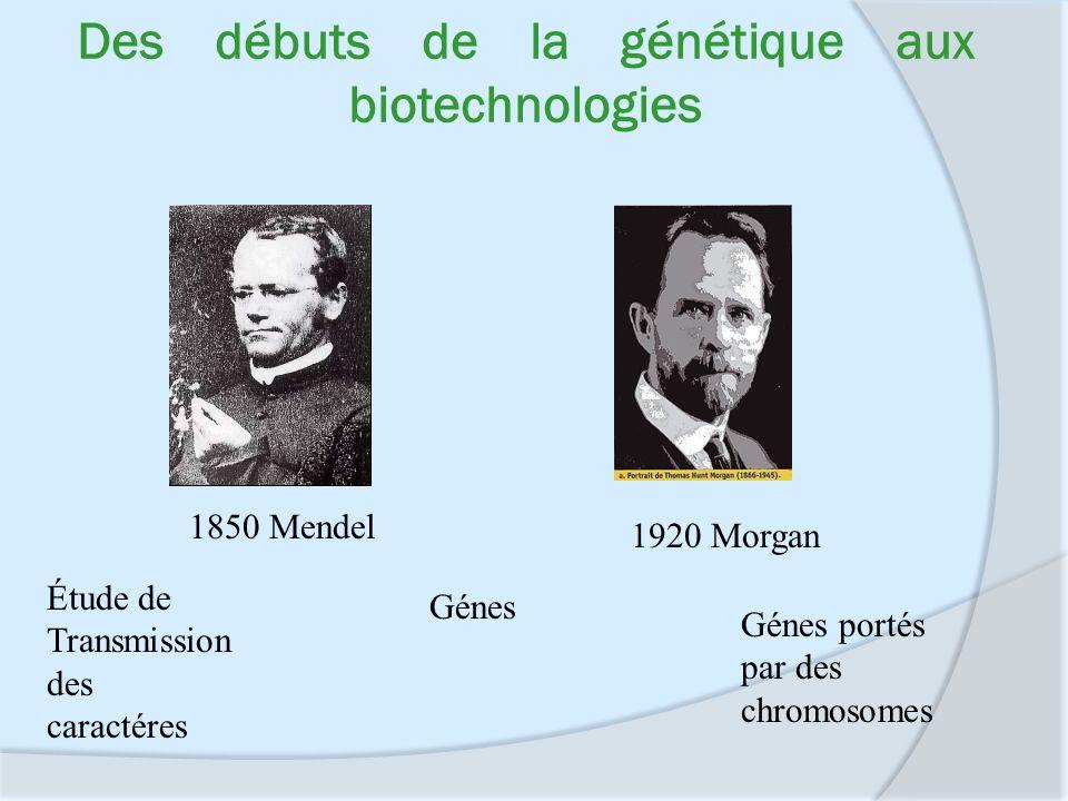Des débuts de la génétique aux biotechnologies