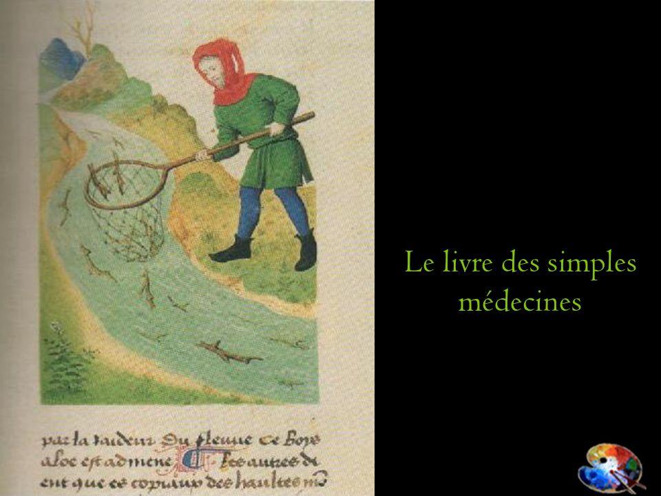 Le livre des simples médecines
