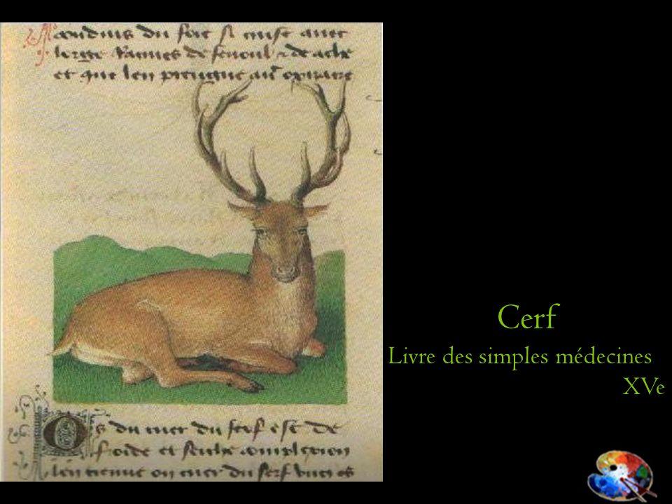 Cerf Livre des simples médecines XVe