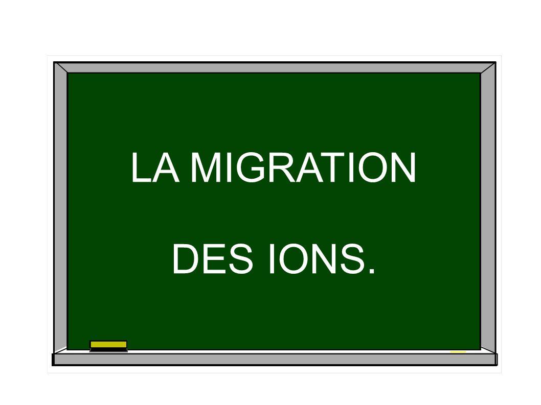 LA MIGRATION DES IONS. LA MIGRATION DES IONS.