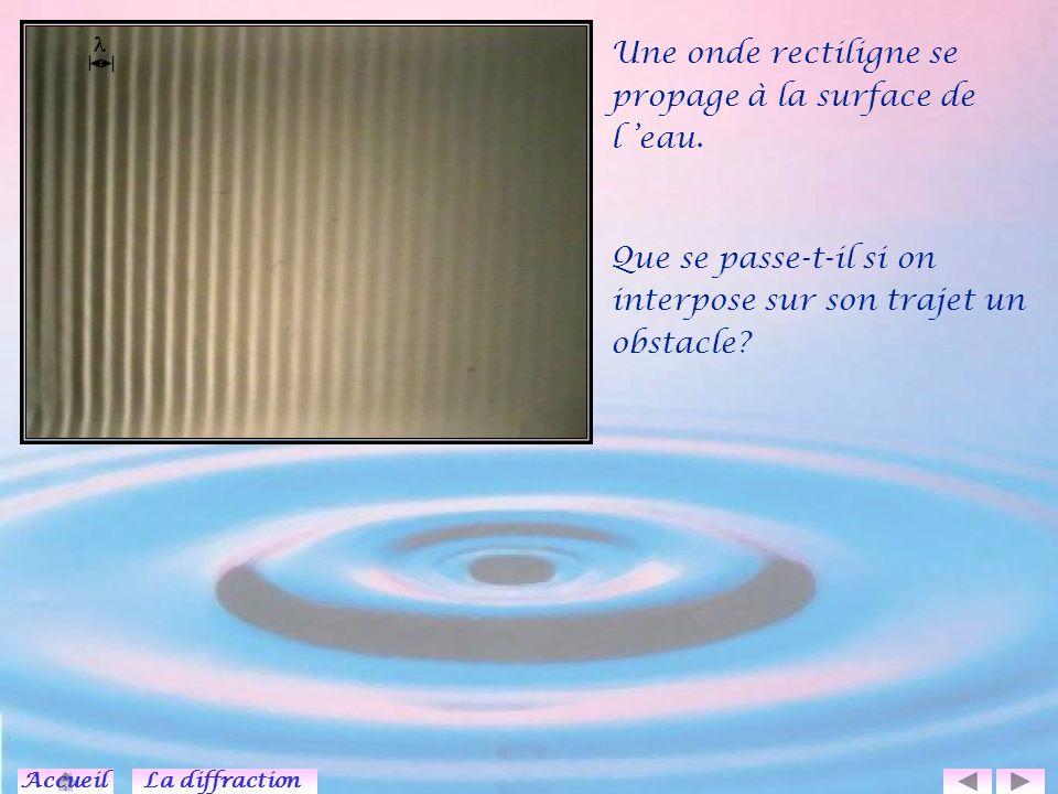 Une onde rectiligne se propage à la surface de l 'eau.