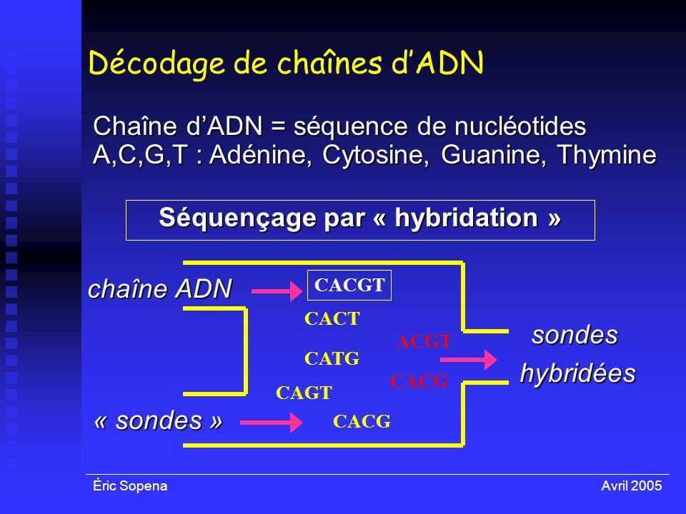 Décodage de chaînes d'ADN