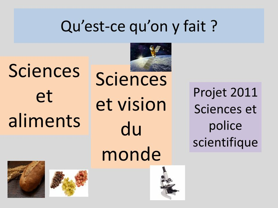 Sciences et vision du monde