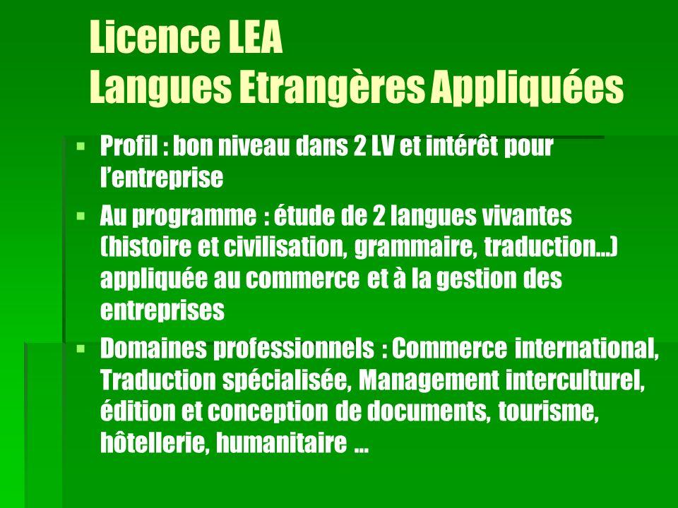 Licence LEA Langues Etrangères Appliquées
