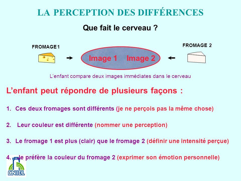 LA PERCEPTION DES DIFFÉRENCES
