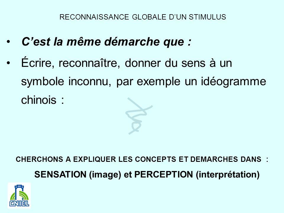 RECONNAISSANCE GLOBALE D'UN STIMULUS
