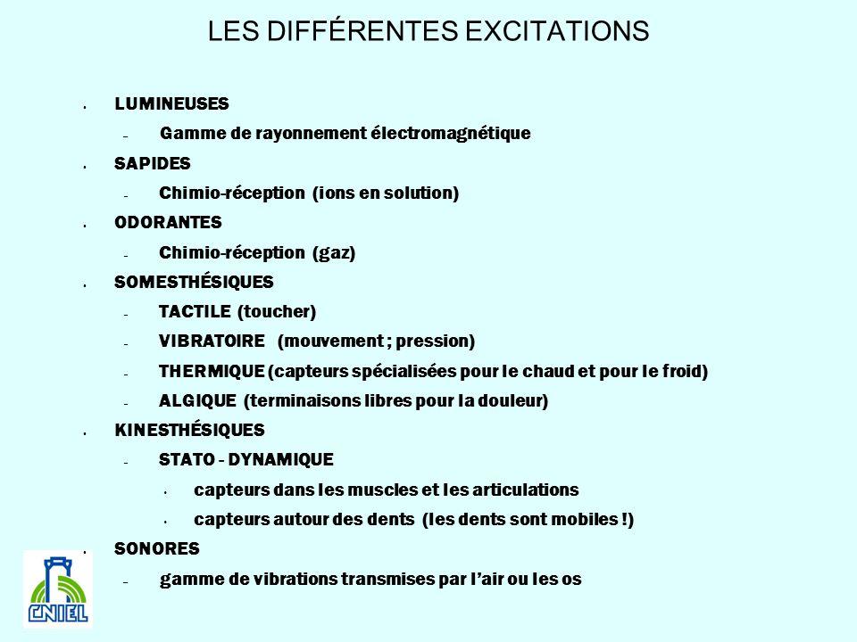 LES DIFFÉRENTES EXCITATIONS