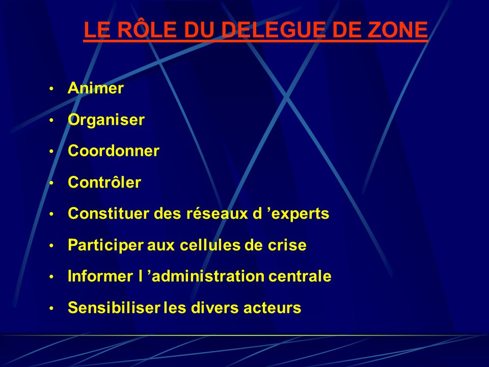 LE RÔLE DU DELEGUE DE ZONE