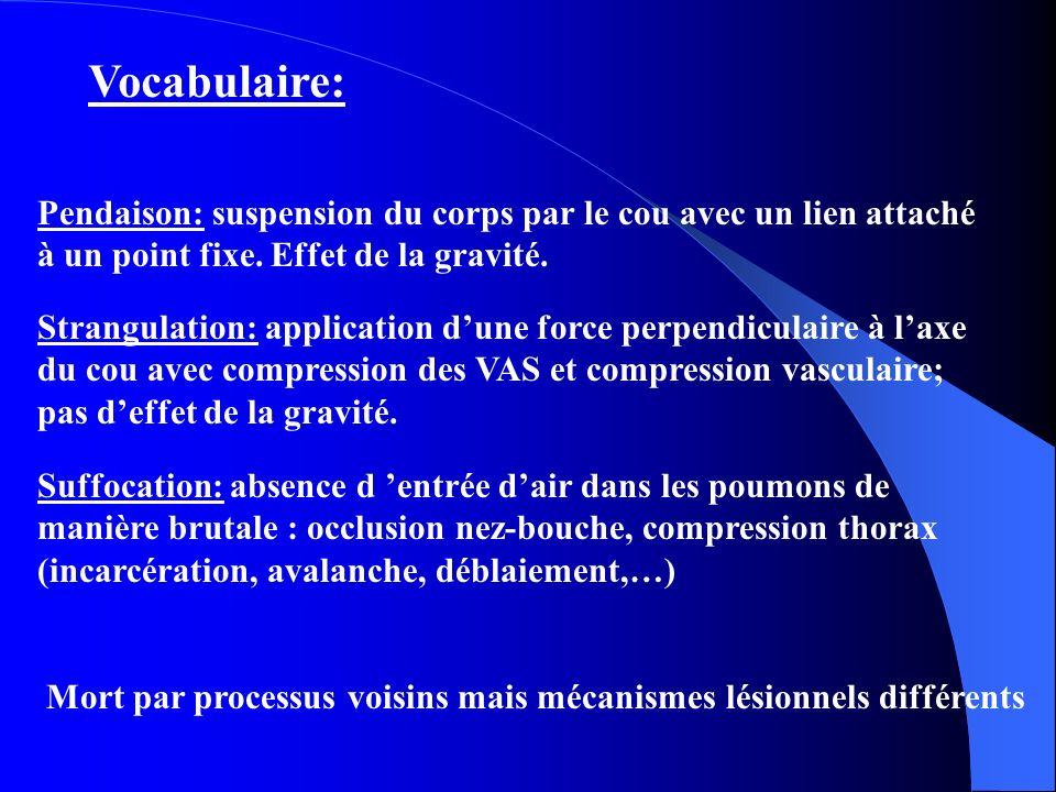 Vocabulaire: Pendaison: suspension du corps par le cou avec un lien attaché à un point fixe. Effet de la gravité.