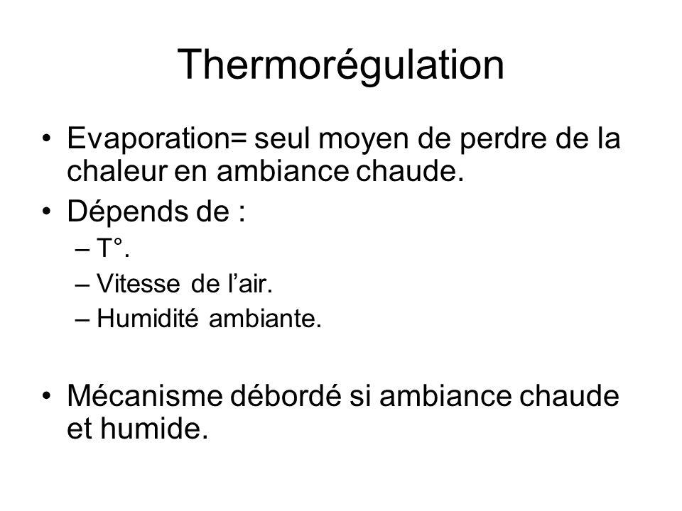 Thermorégulation Evaporation= seul moyen de perdre de la chaleur en ambiance chaude. Dépends de : T°.