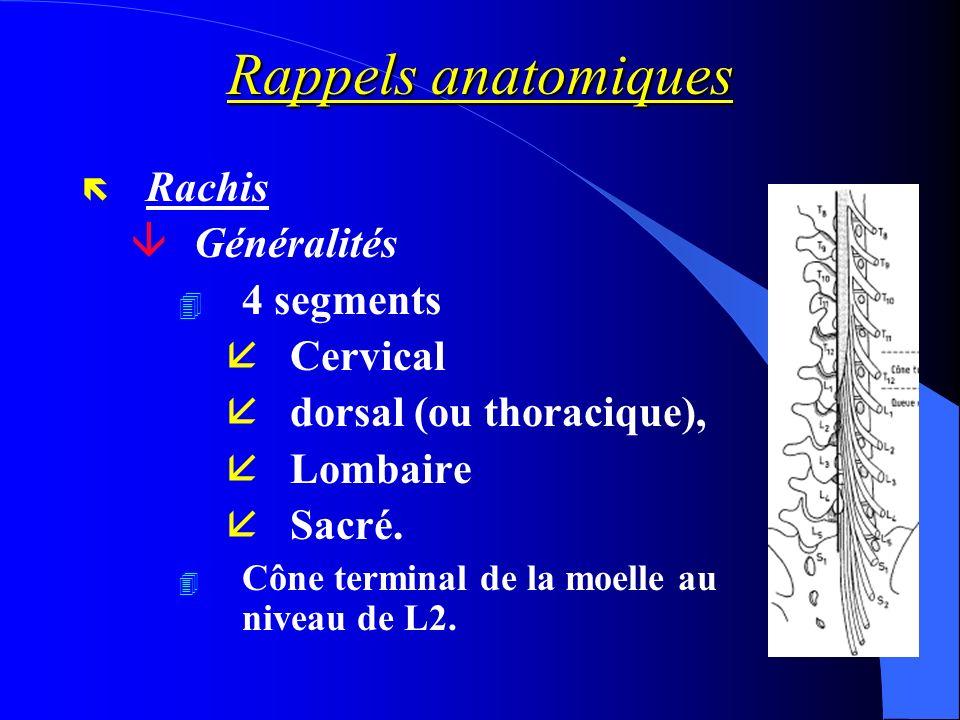Rappels anatomiques Rachis Généralités 4 segments Cervical