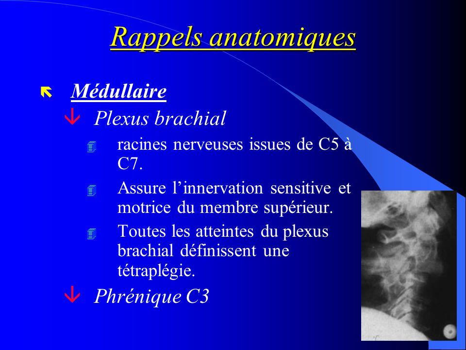 Rappels anatomiques Médullaire Plexus brachial Phrénique C3